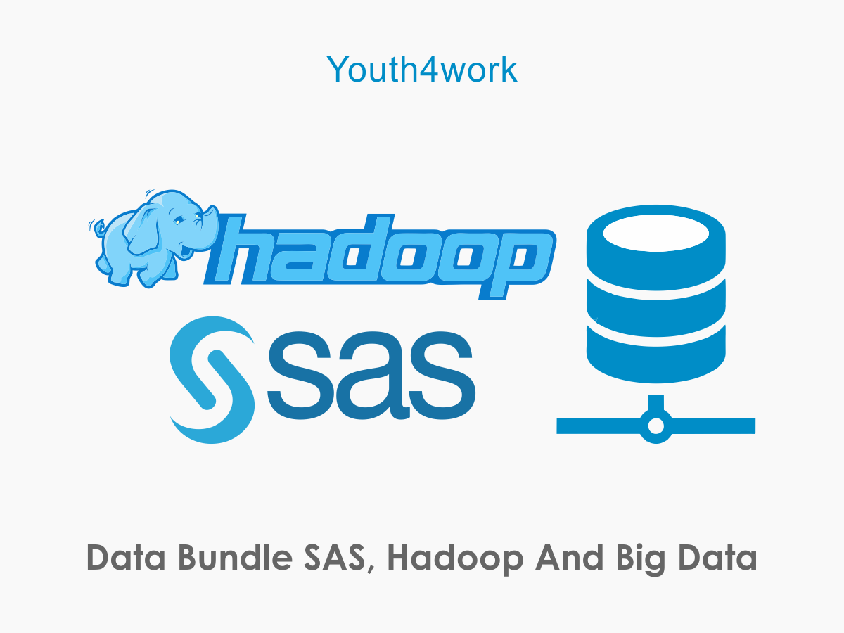 Data Bundle SAS, Hadoop and Big Data