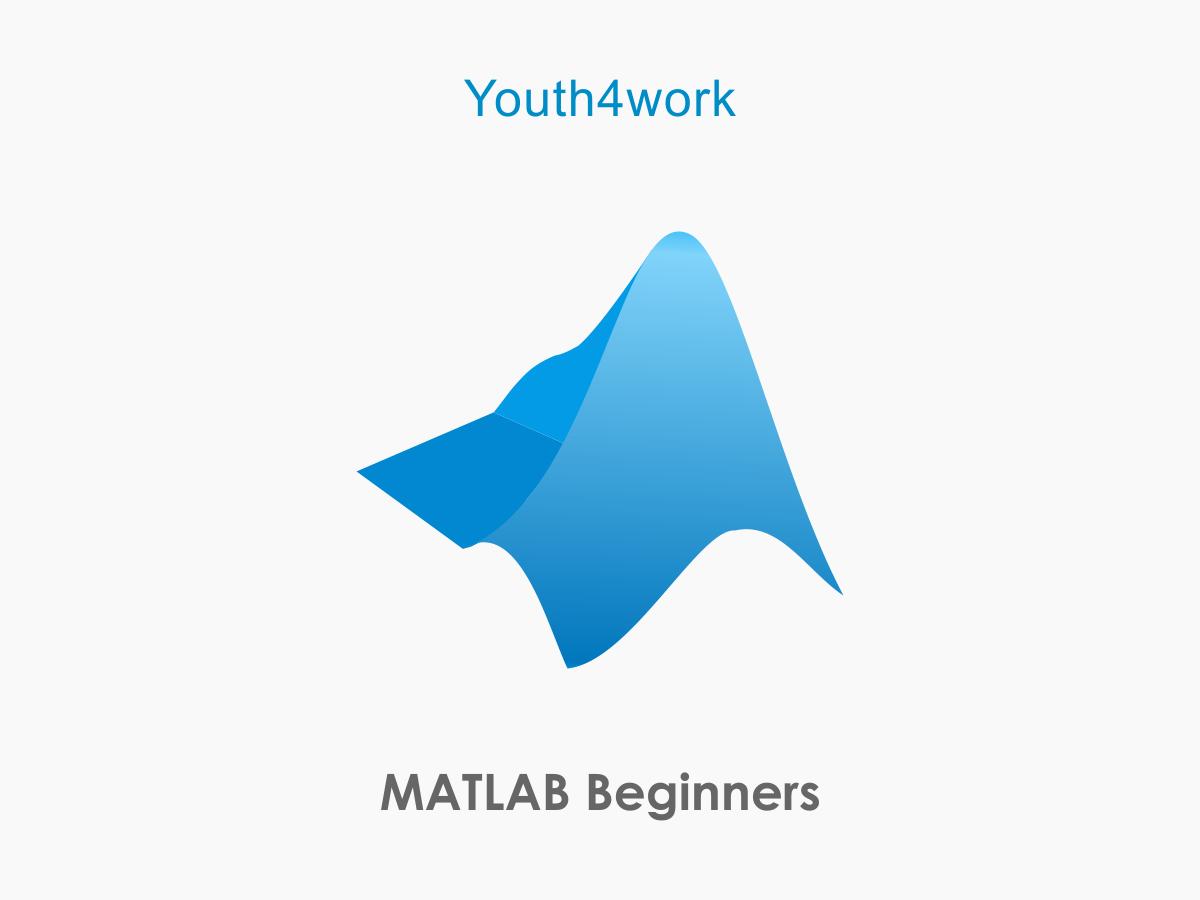 MATLAB Beginners