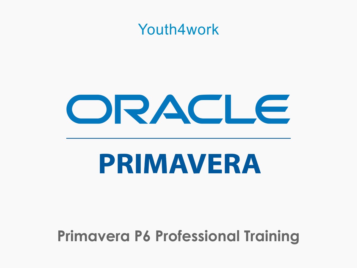 Primavera P6 Professional Training
