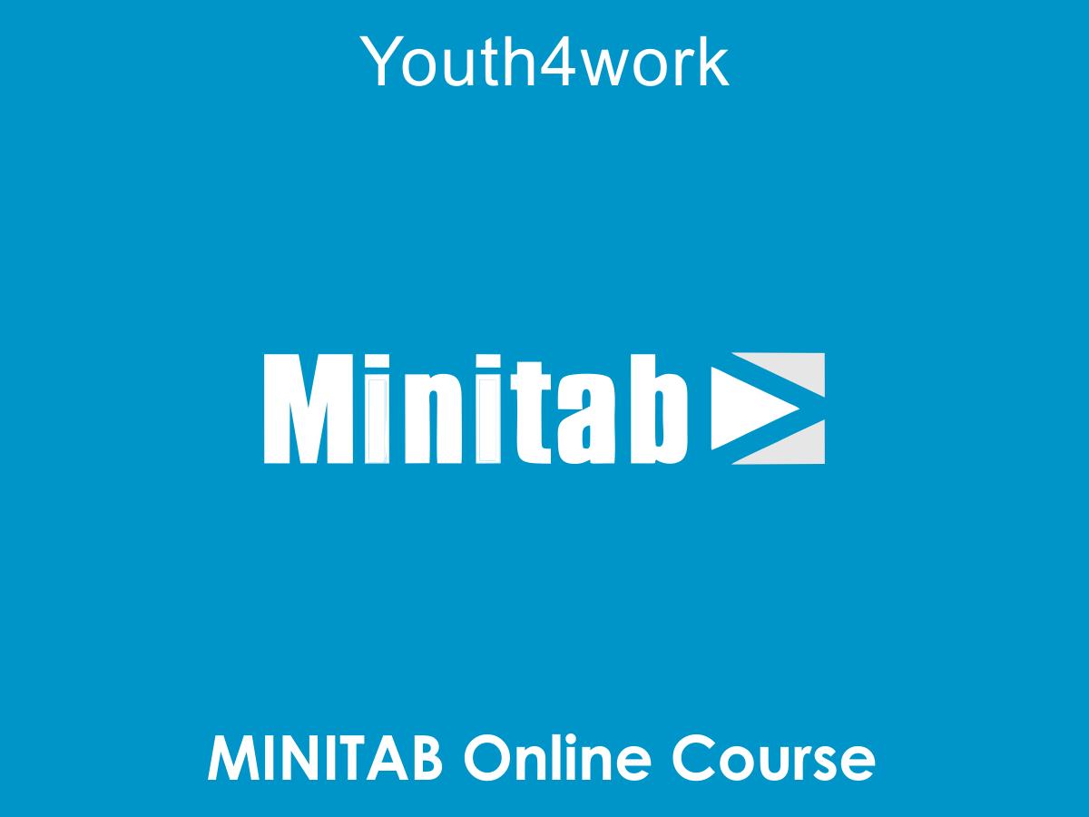 MINITAB Online Course
