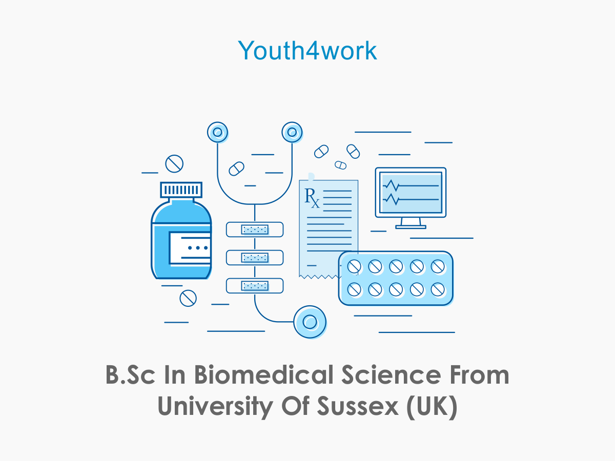 B.Sc in Biomedical Science from University of Sussex (UK)