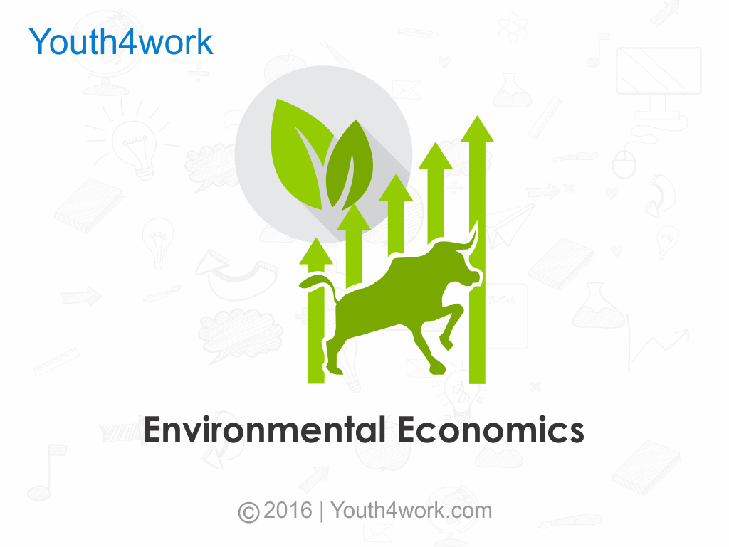 Environmental Economics Training