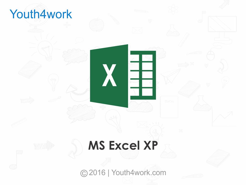 MS Excel XP