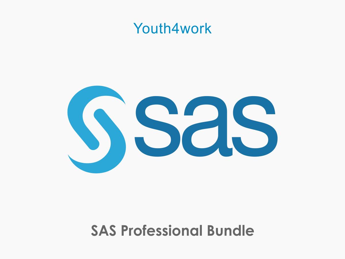 SAS Professional Bundle