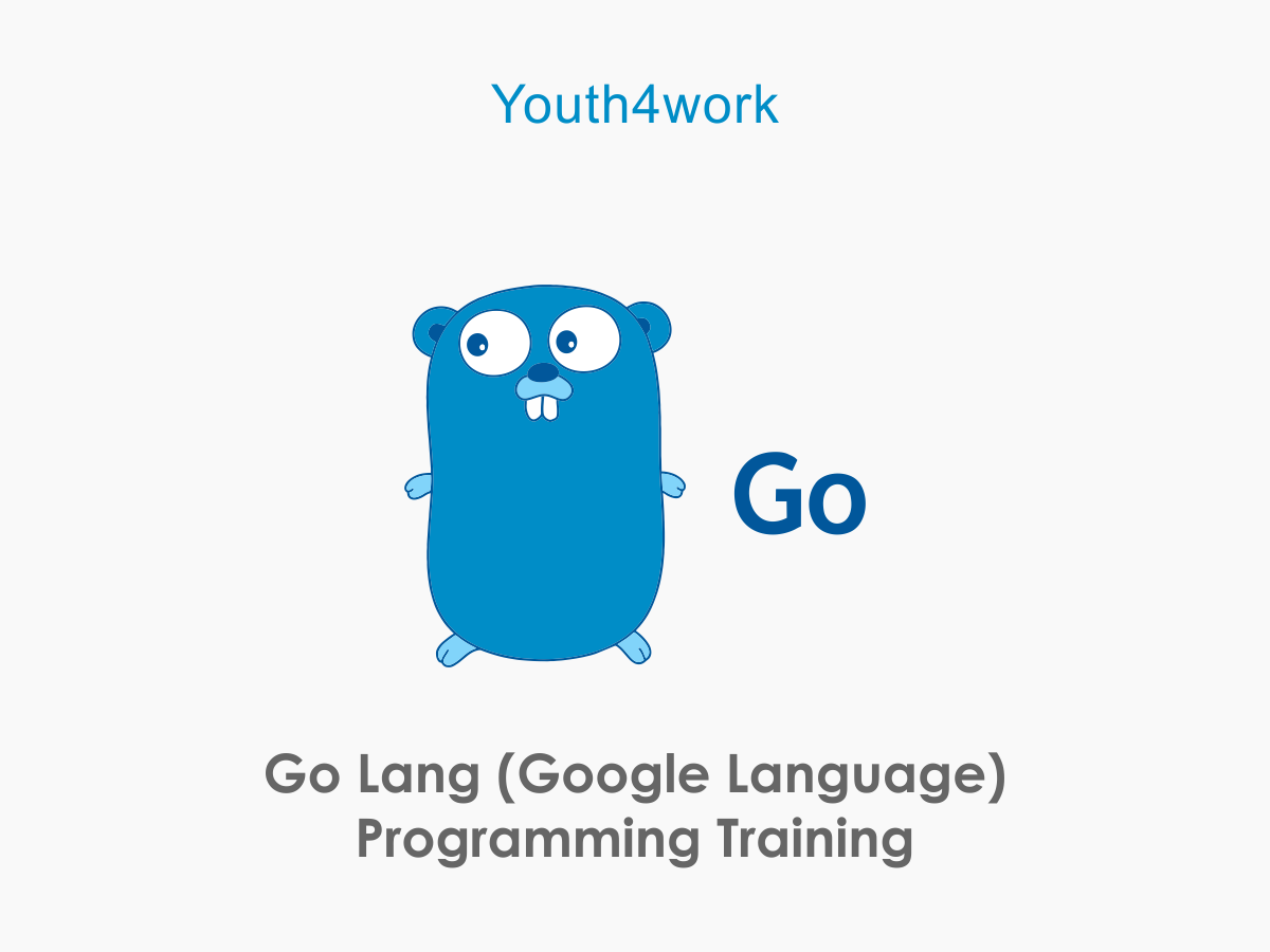 Google Language Programming Training
