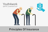 Principles Of Insurance Online Course