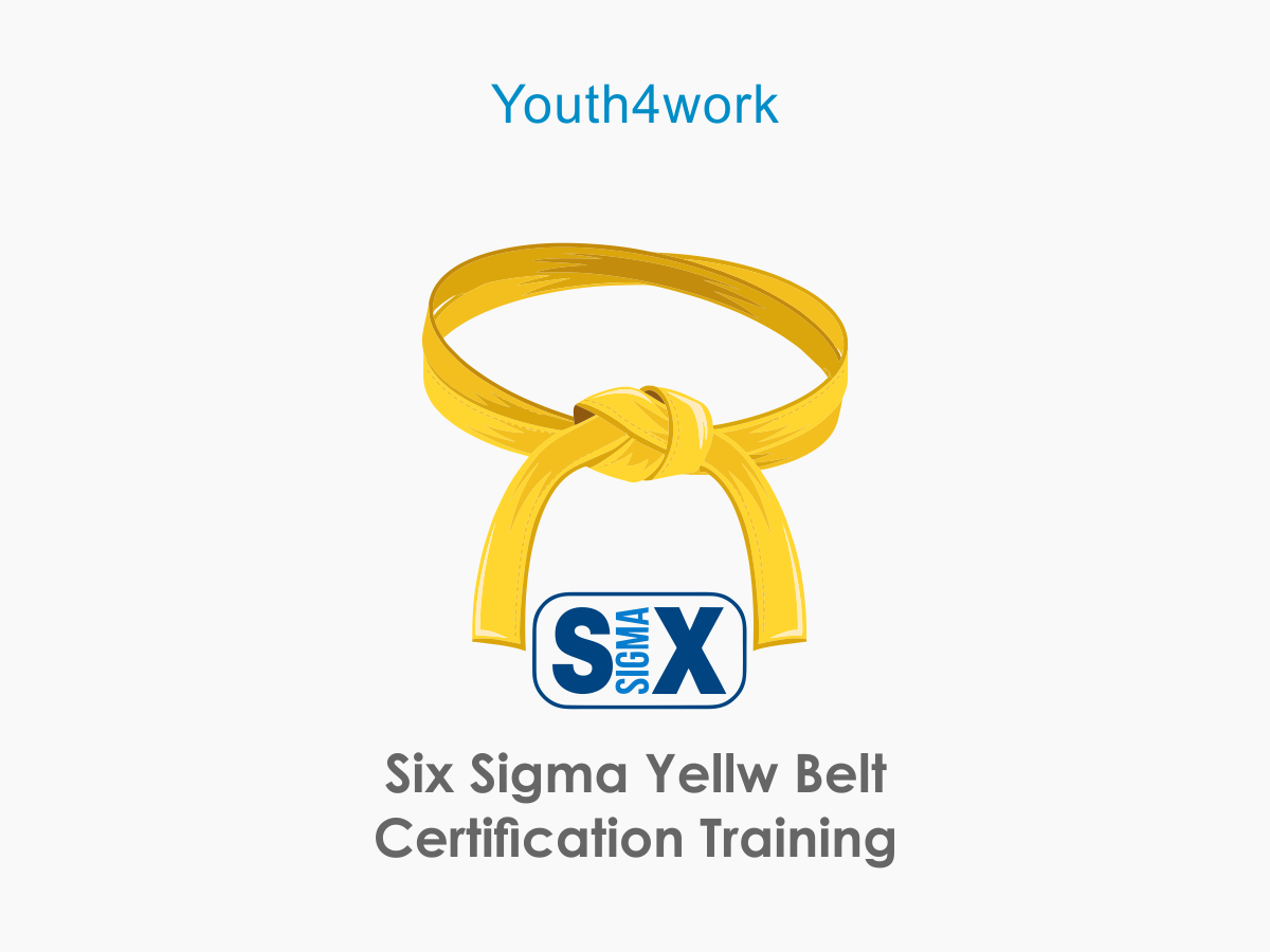 Six Sigma Yellw Belt Certification Training