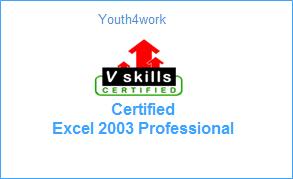 VSkills Certified Excel 2003 Professional