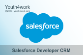 Salesforce Developer CRM