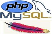 PHP My Sql Self Understanding