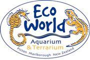 EcoWorld Site seminar report