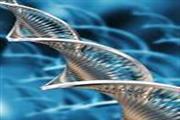 Fundelmentals Of BioTechnology