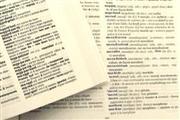 Online dictionary seminar report