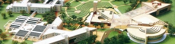 DSM-Delhi School of Management