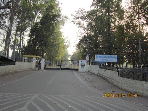 Madan Mohan Malaviya Engineering College Photos