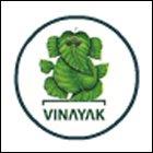 VV-Vinayak Vidyapeeth