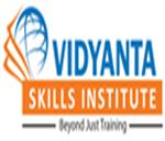 Vidyanta Skills Institute