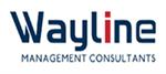 Wayline Management Consultants Pvt Ltd