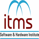 Information Technology Management Society
