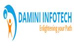 DI-DAMINI INFOTECH