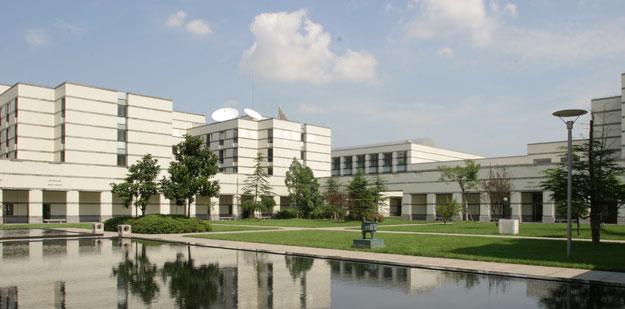 India Europe International Business School