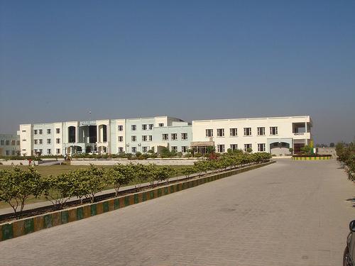Gurukul Punjab University