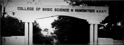 College of Basic Sciences and Humanities