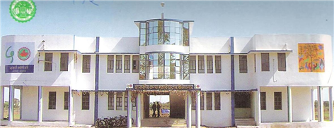 Government college for girls