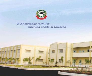 Olive P G College Rangareddy