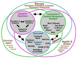 symptom management theory