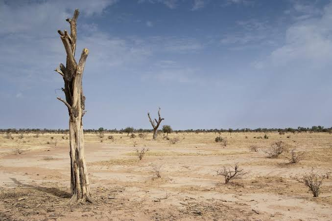 Desertification: Great concerns, Steps taken so far by UN and the way forward