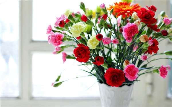 spice up your room with flowers