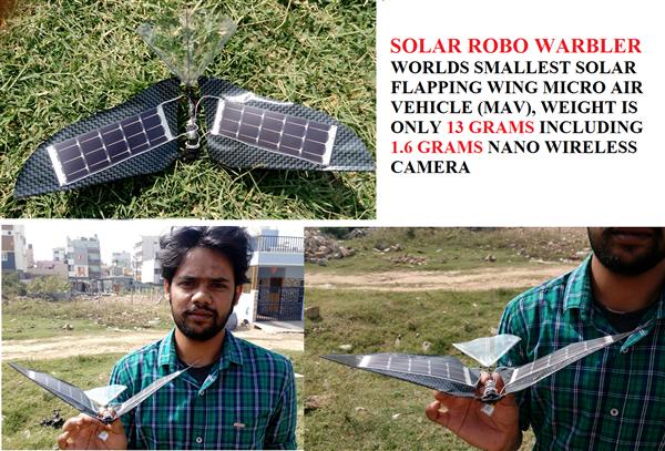 Solar Robo Warbler