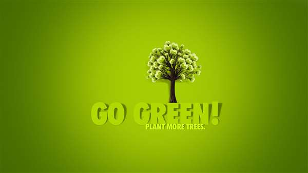 Go green and clean