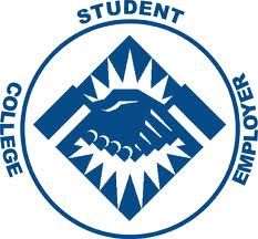 Class Rep and Student Placement Coordinator