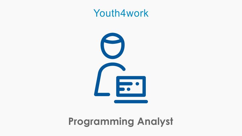Programming Analyst