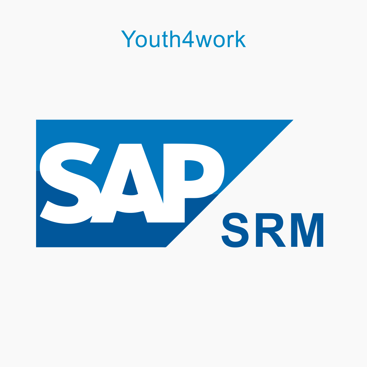 resumes for sap srm professionals looking for jobs  part