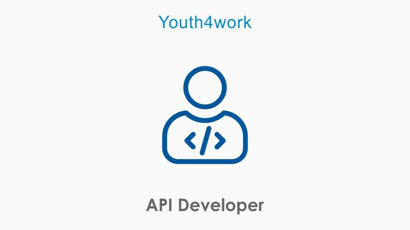 API Developer