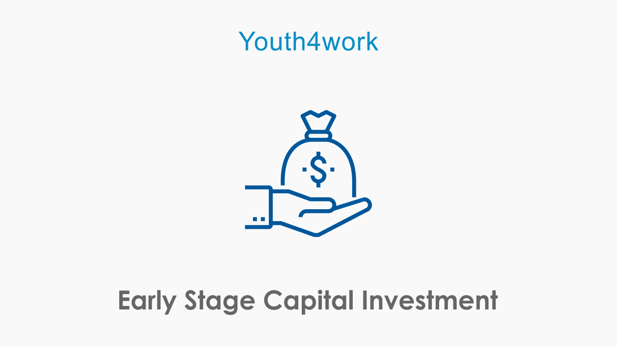 Early Stage Capital Investment