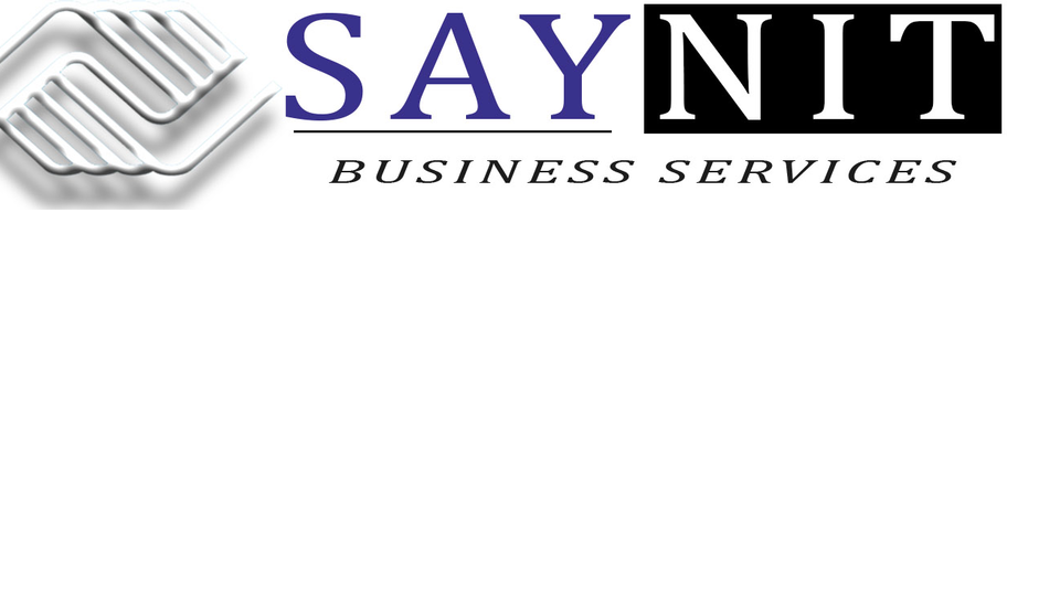 SAYNIT BUSINESS SERVICES PVT LTD