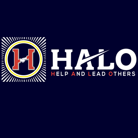 HALO TECHNOLOGY SOLUTIONS