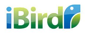 Ibird Brand Imaging LLP