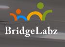 BridgeLabz Solutions LLP