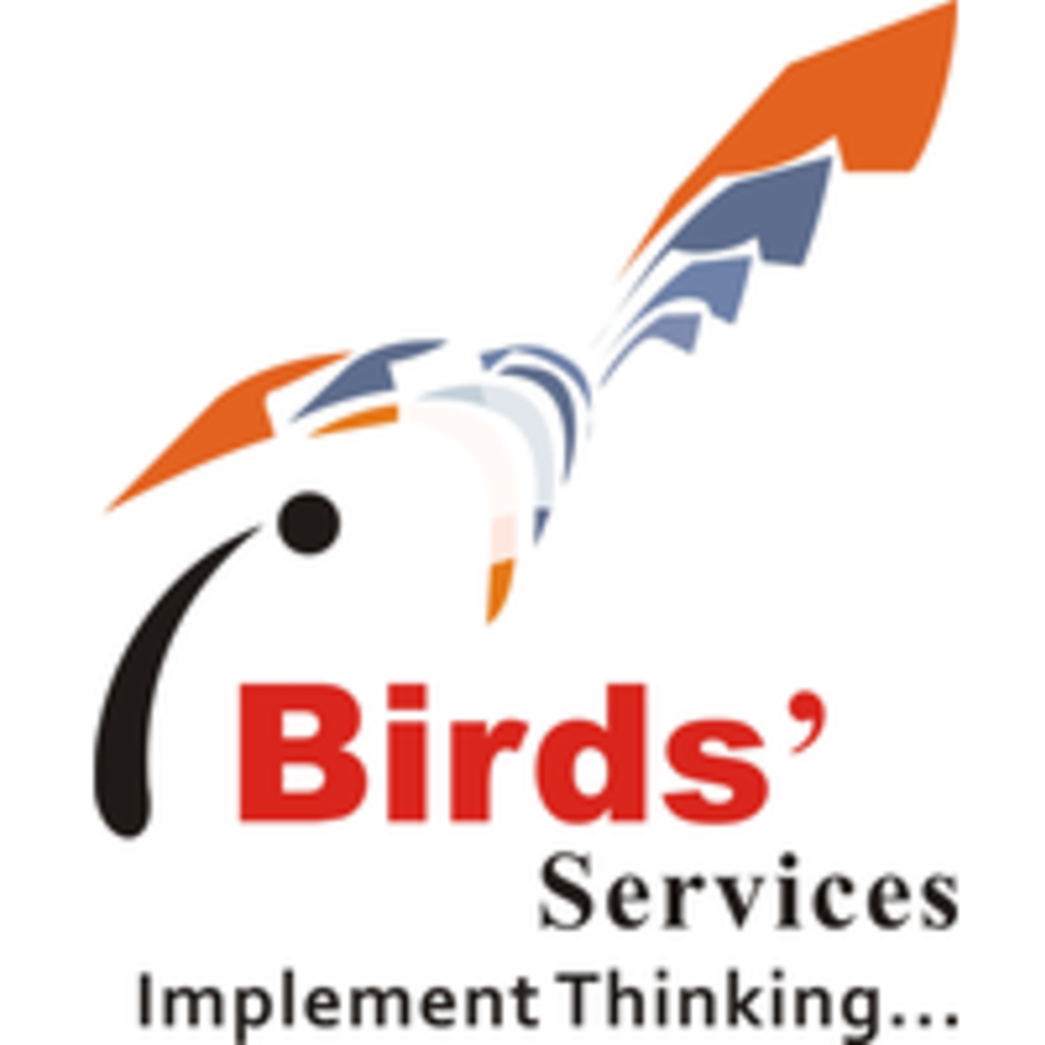 iBirds Software services