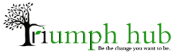 TRIUMPHHUB TRAINING AND PLACEMENT INSTITUTE