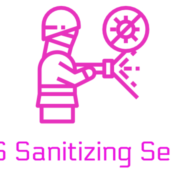 DSS Sanitizing Service