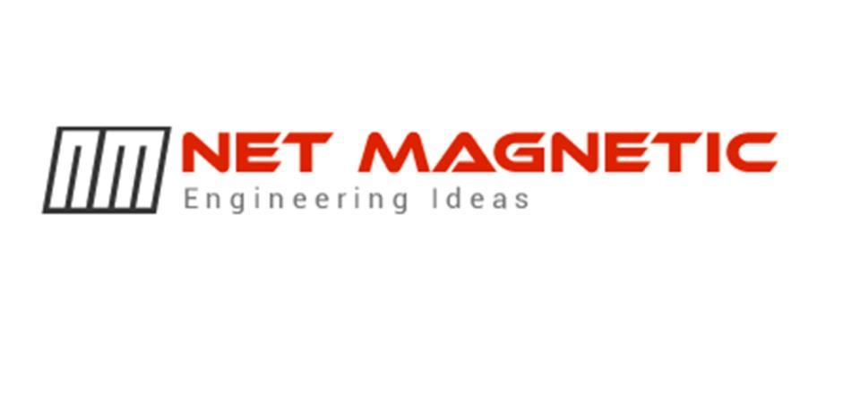 Netmagnetic Software Infosolutions Pvt Ltd