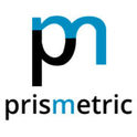 job in Prismetric Technologies Pvt Ltd