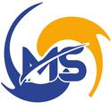 job in MindMine Services Pvt Ltd