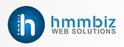 job in HMMBiz web solutions